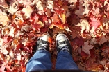 Sneakers in the leaves (October)