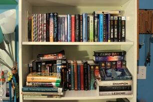 2016-04-21 002 Bookshelf