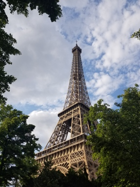 photo fo the Eiffel Tower surrounded by trees